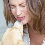 Собаки могут предупреждать владельцев о приступе мигрени