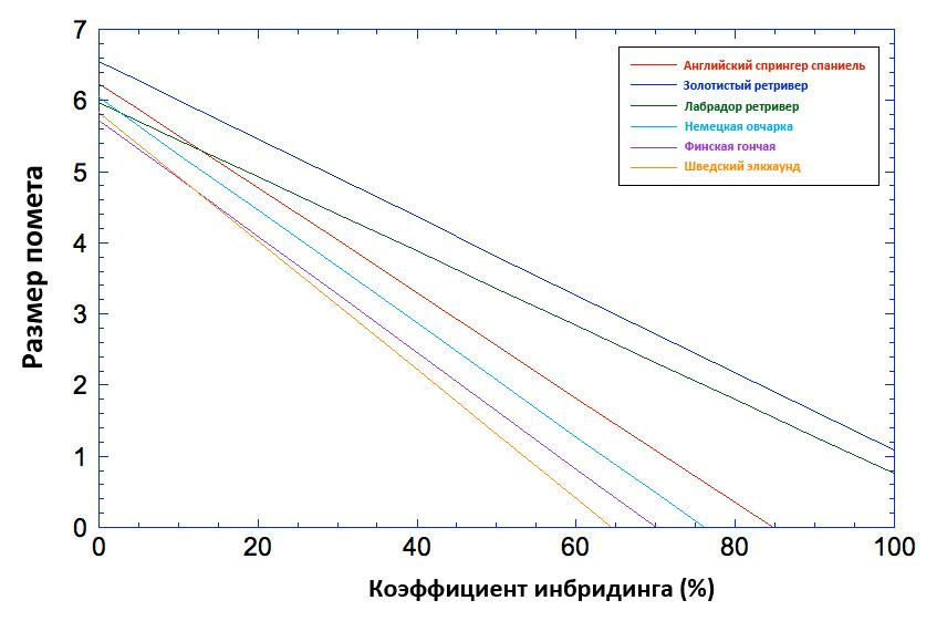 Соотношение размера помета и коэффициента инбридинга