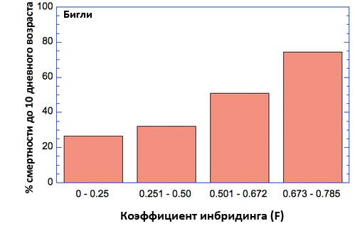 Соотношение ранней смертности и КИ