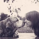 Гиперопека полезнее для собак, чем для детей