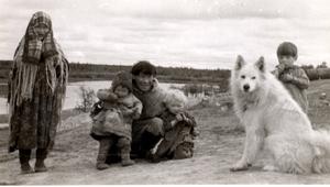 Пастушья собака оленеводов на берегу реки Полуй, притока Оби на северо-западе России в конце июля 1962 г.