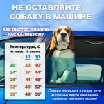 Не оставляйте собаку в машине!