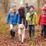 Что отличает владельцев собак?