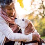 Печальная правда о собаках и депрессии