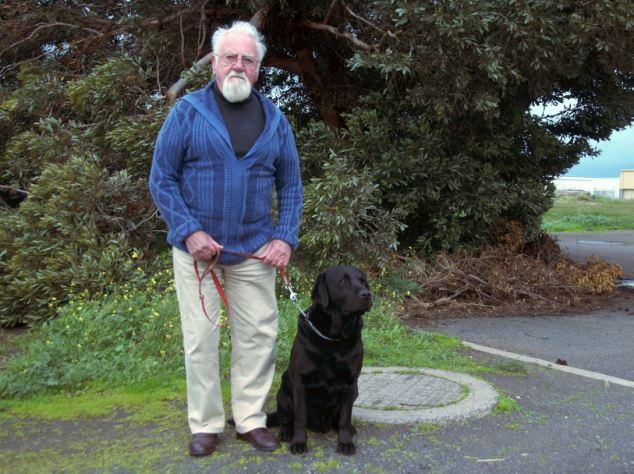 Wally Conron (Creator of the Labradoodle)