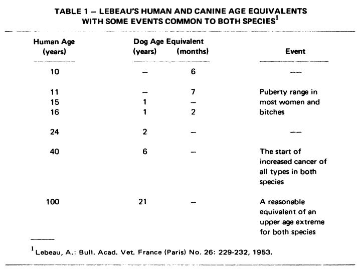 Лебо соотношение возраста человека и собак