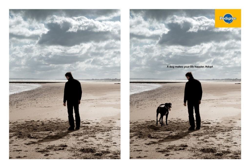 pedigree реклама