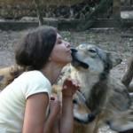 Возможности социального обучения при взаимодействии людей и собак